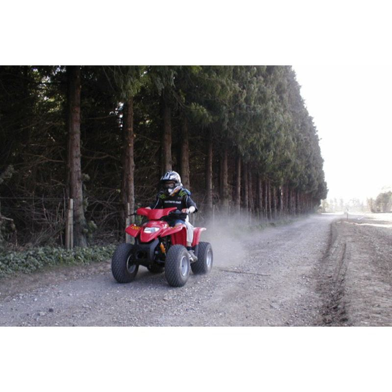 Junior Quad Bike Thrill product image