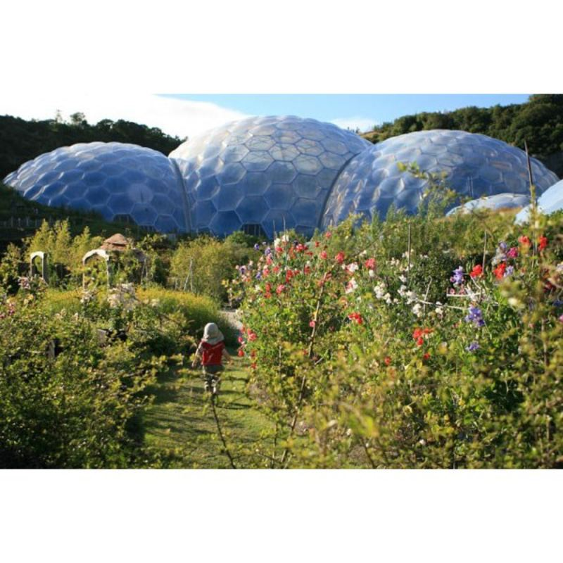 Chocolate Flavoured Rainforest Private Tour for Two at The Eden Project product image