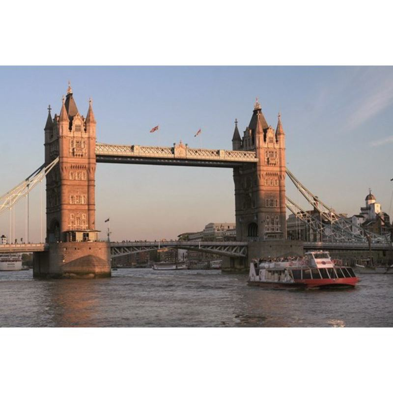 Family Thames Sightseeing Cruise with 24 Hour Rover Pass product image