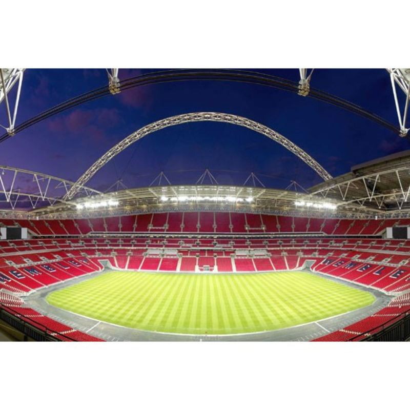 Family Tour of Wembley Stadium product image