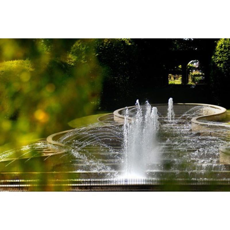 The Alnwick Garden and Afternoon Tea for Two product image