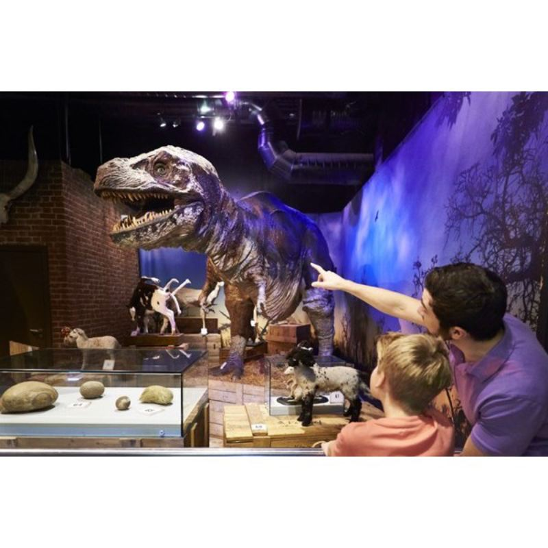Visit Ripley's Believe it or Not! London for Four – Special Offer product image