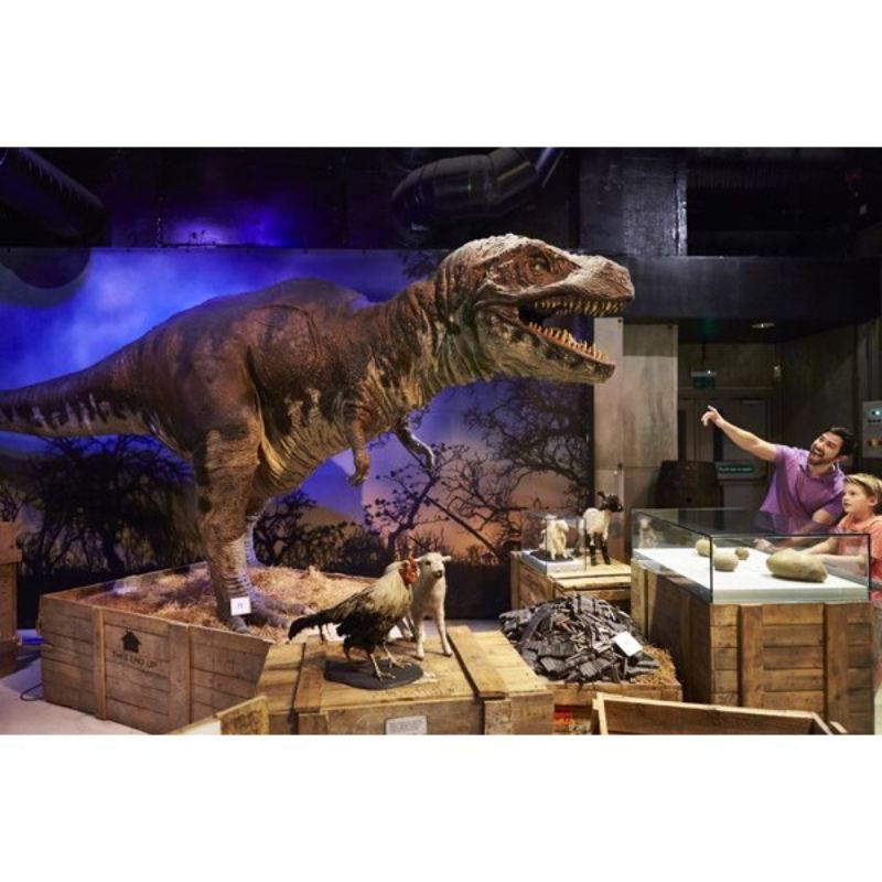 Visit Ripley's Believe it or Not! London for Two – Special Offer product image