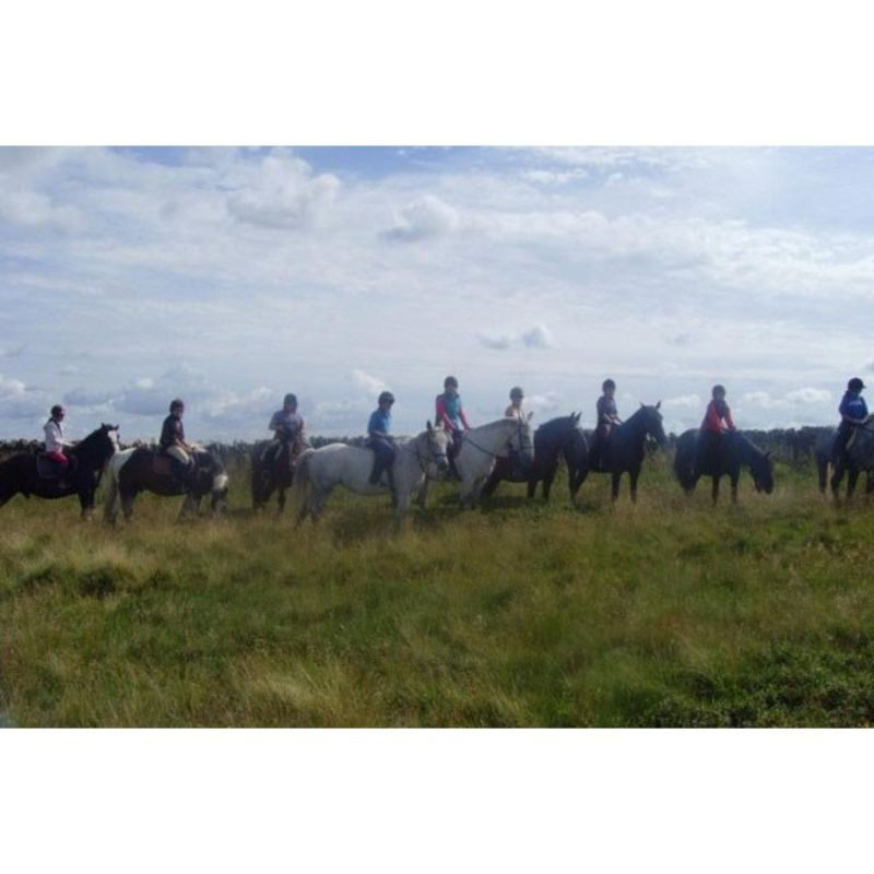 Riding Hack at Bilsdale Riding Centre product image