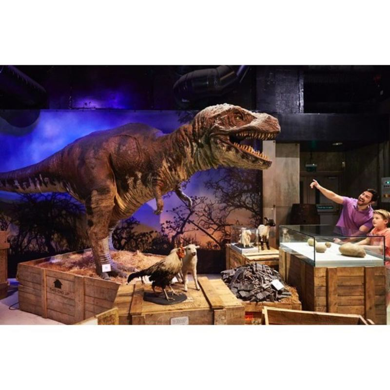 Visit Ripley's Believe it or Not! London – Special Offer product image