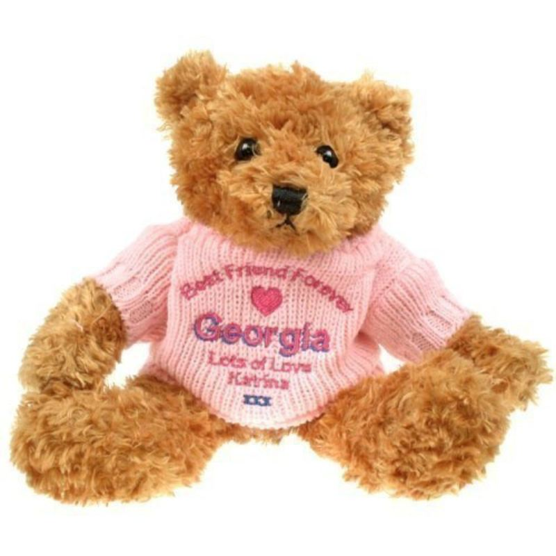 Brown Best Friend Forever Teddy Bear product image