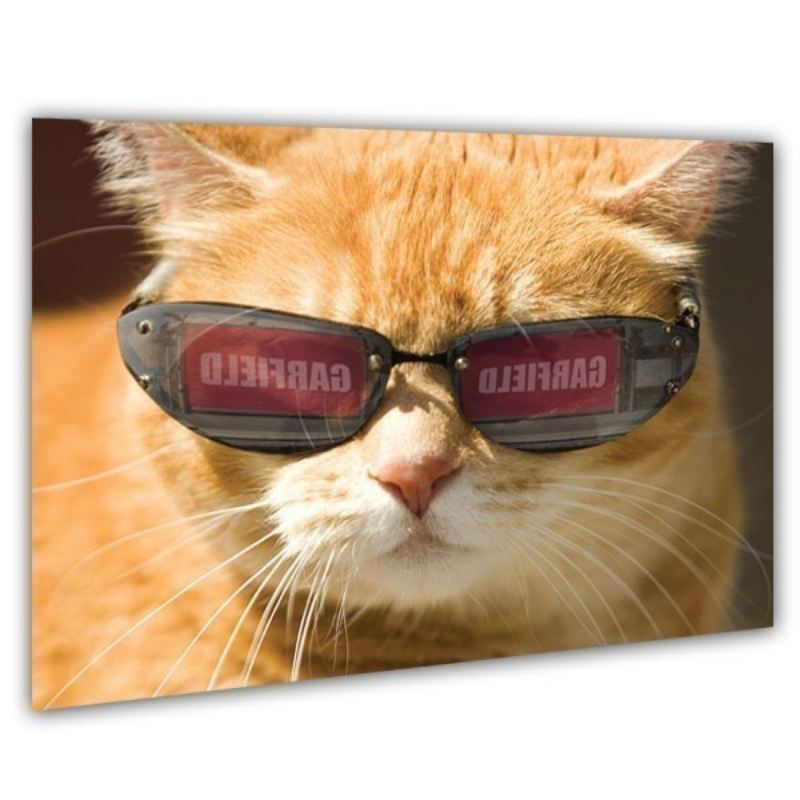 Cool Cat in Shades Personalised Framed Poster product image