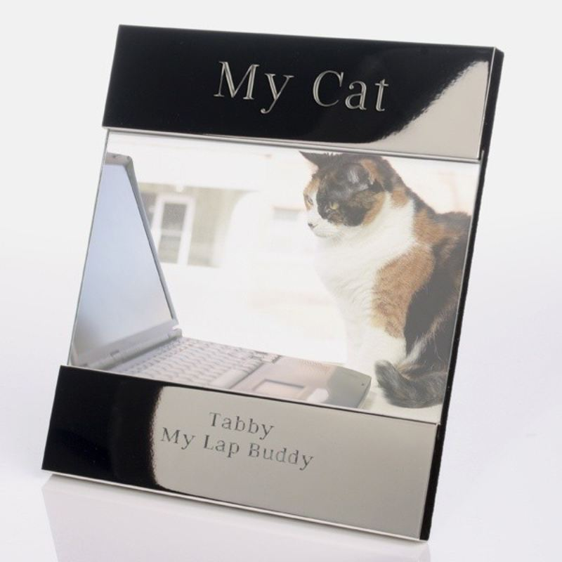 My Cat Shiny Silver Photo Frame product image